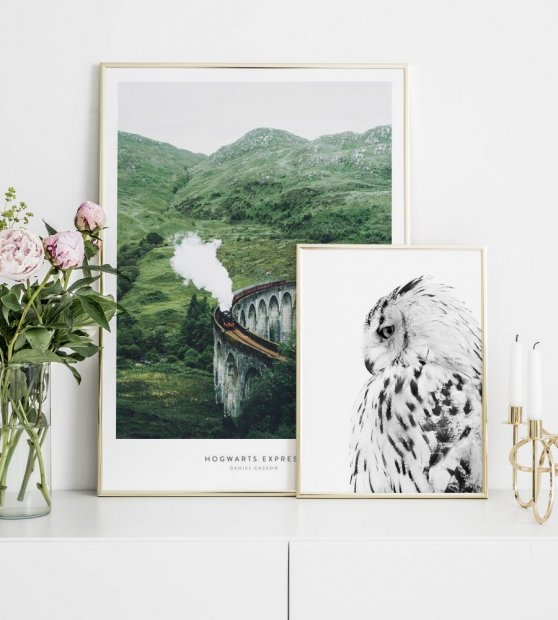 Prints with gold frames and posters inspired by Harry Potter