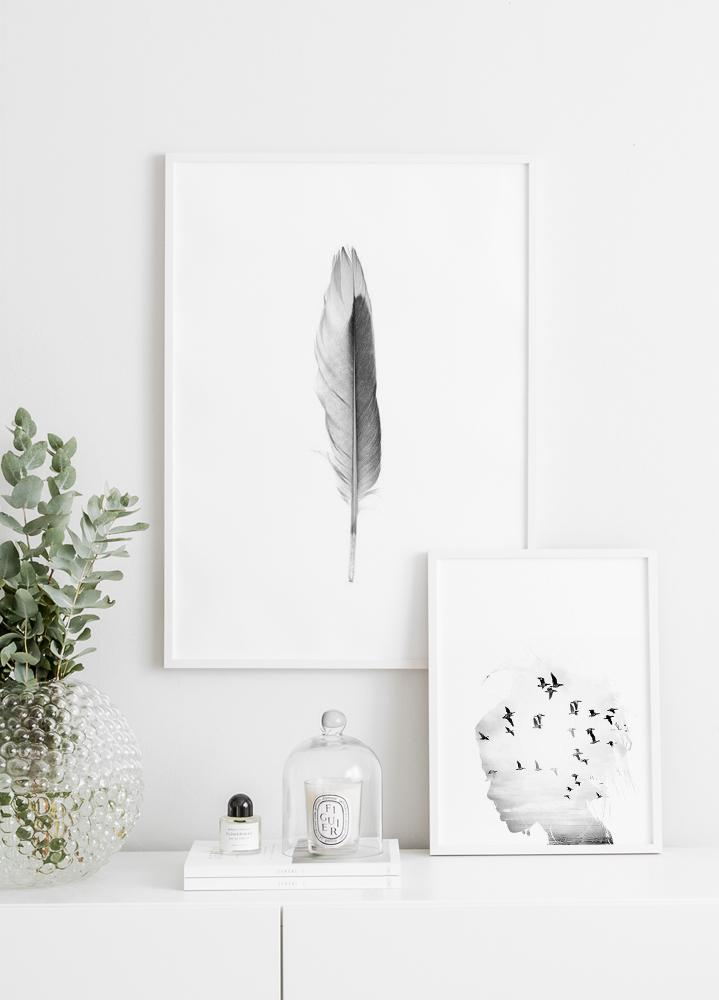 Gray Feather Poster
